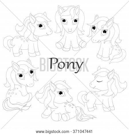 Pony Horse Animal Coloring Child  Illustration Vector
