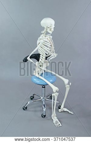Dentist or dental assistant in sitting, position on mobile chair - human skeleton model  -  occupational disease concept