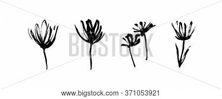 Grunge Dirty Decorative Flowers. Hand Drawn Black Vector Floral Collection, Isolated On White Backgr