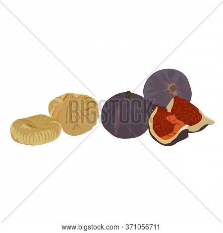 Vector Stock Illustration Of Figs. Large Purple Dried Fig Fruit. Sliced Slices Eastern Dessert. Fruc