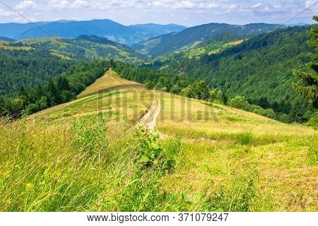 Mountain Landscape In Summer. Blue Sky With Fluffy Clouds. Road Through Green Meadow. Hills Rolling