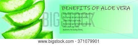 Aloe Vera Banner With Its Benefits, Aloevera Benefits
