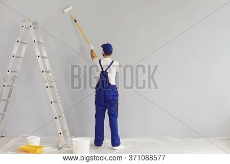 Worker Painter Paints A Wall.back View. Professional Builder Makes Repairs.