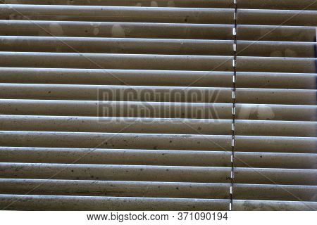 Extremely Dirty Window Blinds In Need Of Cleaning