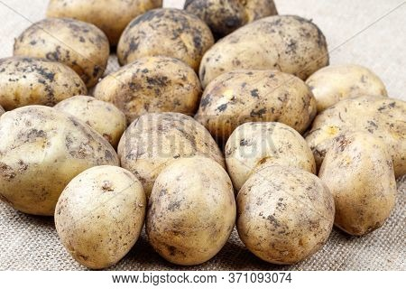 Unwashed Potatoes On A Rough Old Cloth. Vegetables On The Table
