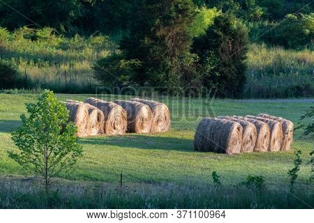 Row Of Large Round Wrapped Hay Bales Roadside In Field Landscape In Tennessee