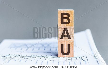 Word Bau - Business As Usual - Acronym Concept On Cubes And Diagrams On A Gray Background. Business