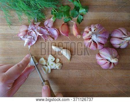 Garlic Sliced & Red Garlic Bulb, Cloves On Wooden Background. Healthy Purple Organic Garlic Hands Cu