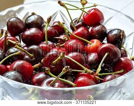 Harvest Of Freshly Harvested Sweet Cherries Close-up. Ripe Red And Black Sweet Berries From Their Ow
