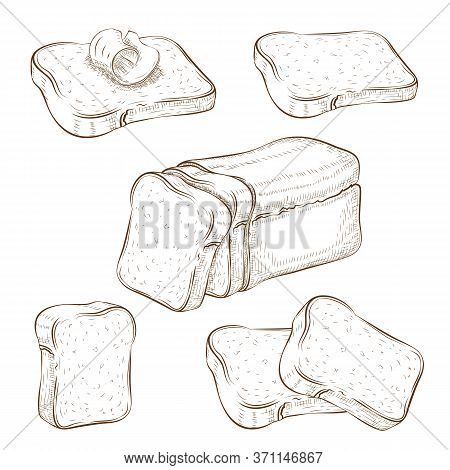 Set Of Drawn Sliced Bread And Toasts Illustration Isolated On White. Wheat Rye Or Whole Grain Square