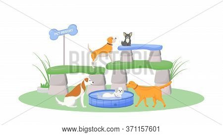 Premium Pet Resort Flat Color Vector Character. Puppy Swim In Pool. Domestic Pets Play In Day Care.