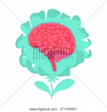 Anatomical Brain Flat Concept Vector Illustration. Neurological Central System. Intelligence And Wis
