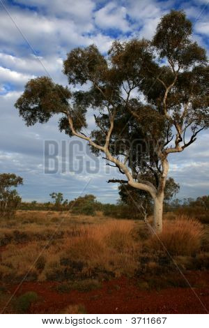 View across the Hammersley range of Pilbara region in Western Australia poster