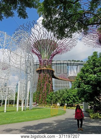 Singapore Asia -  November 22:  Supertree Grove Gardens By The Bay Nature Park November 22, 2014 In