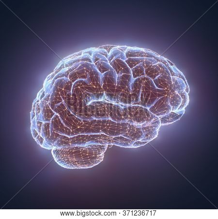Human Brain In A Structure Of Polygonal Connections Representing The Power Of The Mind. Clipping Pat