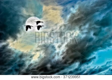 A Flock Of Bird Fly By A Rising Moon In A Dramatic Sky