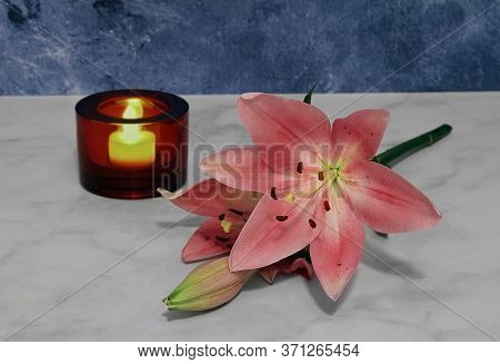 One Stem Of A Pink Asiatic Lily Laying On A Marble Table.  Evening Shot With Lit Candle.