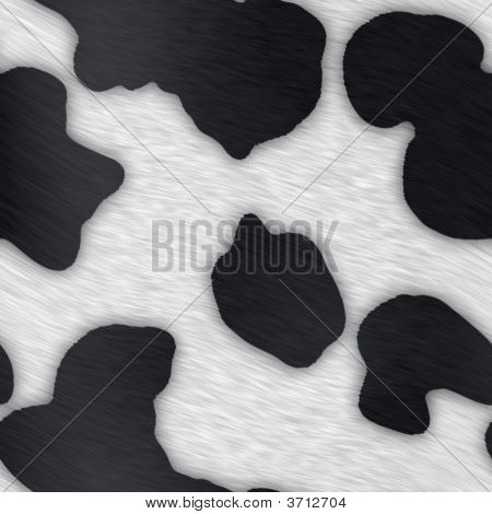 Dairy Cow Print