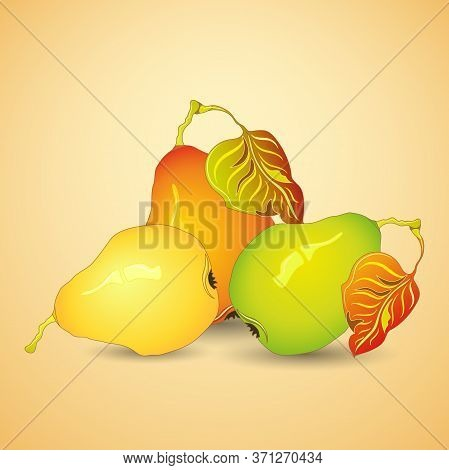 Tree Ripe Pears With Leaves On Light Coloured Background. Vector Illustration.