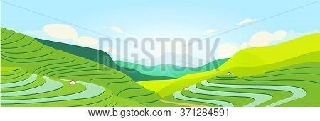 Terraced Fields At Sunset Flat Color Vector Illustration. Chinese Farmland. Tea Plantations 2d Carto