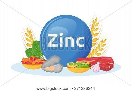 Products Rich In Zinc Cartoon Vector Illustration. Minerals In Seafood, Beef. Garlic And Nuts Health