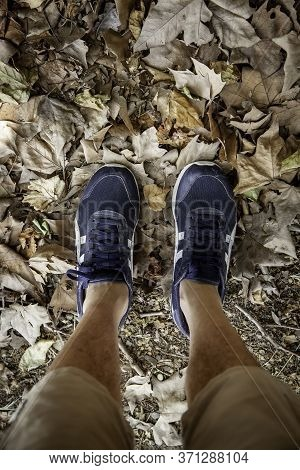 Leaves Sneakers, Sport Detail In Autumn, Man