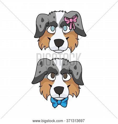 Cute Cartoon Australian Shepherd Dog Face Boy And Girl Vector Clipart. Pedigree Kennel Doggie Breed.