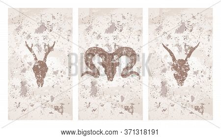 Vector Set Of Three Illustrations With Hand Drawn Silhouettes Skulls Roe Deer, Goat And Ram On Grung
