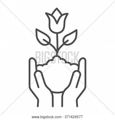 Human Hands Hold Tulip In Soil Thin Line Icon, Spring Concept, Tulip Bud With Leaves Sign On White B