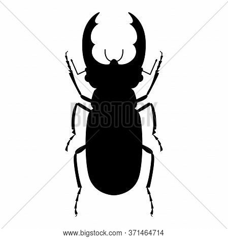 Silhouette Of A Stag Beetle On A White Background. Vector Illustration.