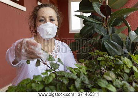 Old Woman Wearing A Medical Mask, Tending Her Plants At The Entrance Of Her Home During Coronavirus