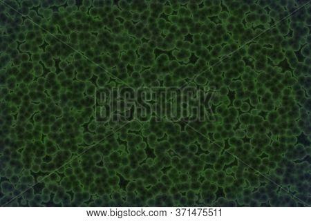 Design Nice Green Huge Amount Of Organic Living Cells Digitally Made Background Or Texture Illustrat