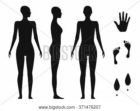 Human Body Silhouette Of A Bald Naked Barefoot Adult Female. Palm Hand, Bare Feet And Shoe Trace