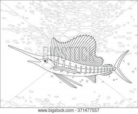 Large Marine Swordfish Swimming In A Deep Tropical Sea, Black And White Outline Vector Cartoon Illus