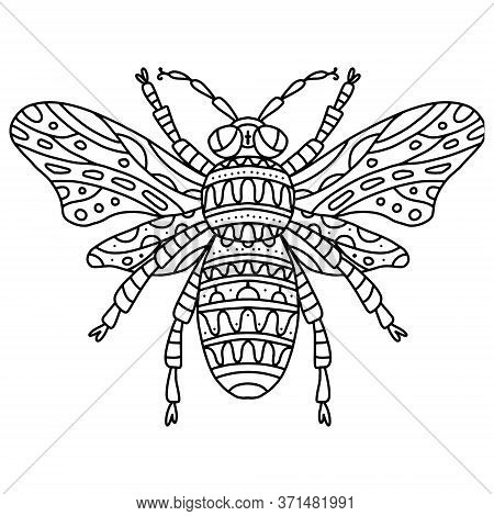 Vector Coloring Bee With Wings With Small Patterns. Coloring Book Black And White Zentagl Patterns S