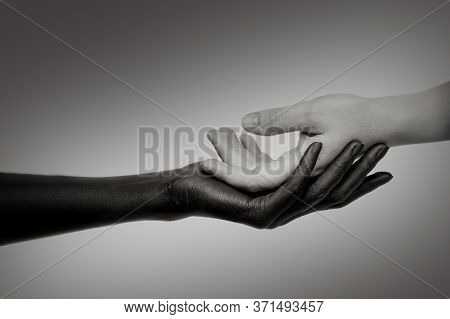 The Black Hand Holds The White Hand In Its Palm, Turned Palm Up. Black-and-white Photo, Close-up. Th