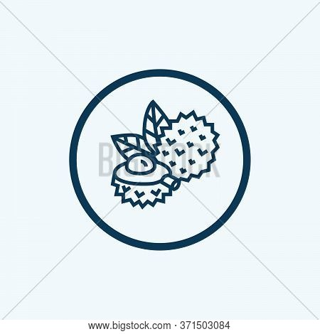 Lychee Icon Isolated On White Background From Fruits Collection. Lychee Icon Trendy And Modern Lyche