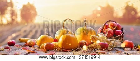 Happy Thanksgiving Day Background. Wooden Table Decorated with Pumpkins. Holiday Autumn Concept Harvest