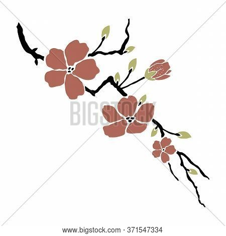 Vector Cherry Blossom In Spring Time. Graphical Flower Illustration. Green Flower, White Flower, Con