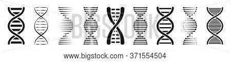 Set Of Dna Or Chromosome Icons Set. Vector Illustration.