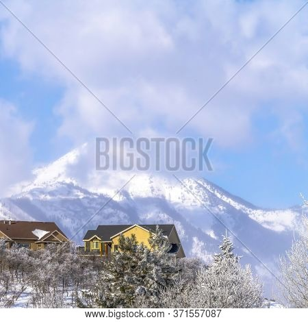 Square Distant Snowy Wasatch Mountains With Homes In Foreground On A Sunny Winter Day