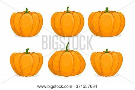 Cartoon Pumpkin Set. Different Shapes And Sizes Orange Gourd. Element For Autumn Halloween Party Inv