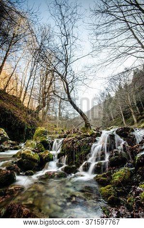 Árbol Nacido Entre Las Cascadas De San Millan