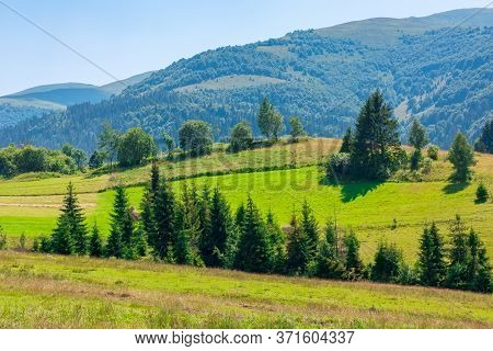 Mountainous Rural Landscape. Beautiful Scenery With Trees And Fields On The Rolling Hills At The Foo