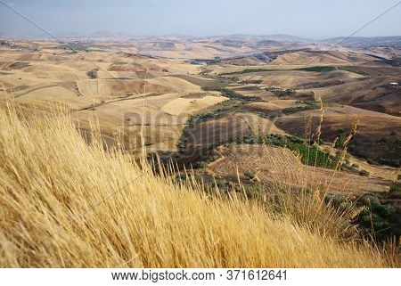 golden grass and fields farm land, scenic view of Sicily summer agriculture