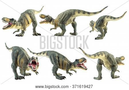 Tyrannosaurus T-rex ,dinosaur On White Background Tyrannosaurus T-rex ,dinosaur On White Background