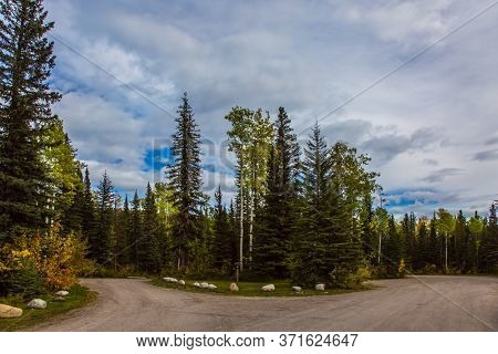 Fork in the road. Canada. Northern Rockies - the main mountain range in the Cordillera. Asphalt highway in forest. The concept of ecological, automobile and photo tourism