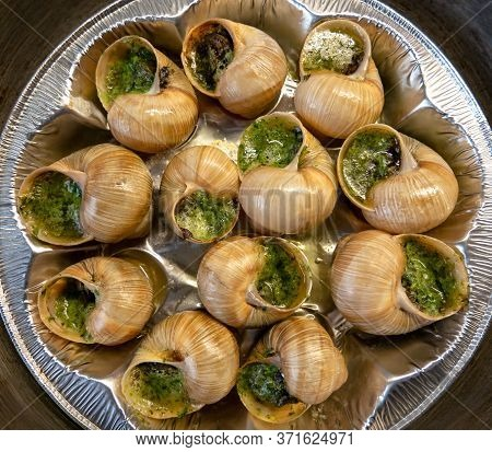 Escargots De Bourgogne- Snails Stuffed With Herbs And Oil. An Exquisite French Dish Of Fried Snails.