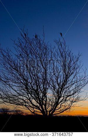 Sunrise In The Texas Panhandle Near Amarillo.