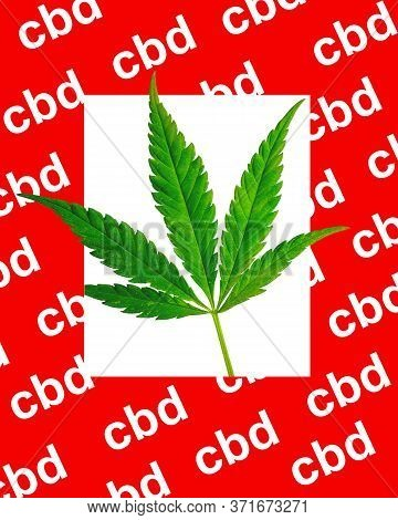 Green Leaf Of Marijuana On A White Background In A Red Thick Frame With The Inscription Cbd